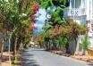جزیره بویوک آدا