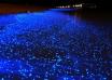 ساحل درخشان مالدیو