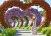 miraclegarden 104x74 - میراکل گاردن دبی ، امارات | Dubai