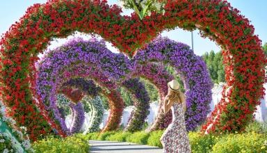 miraclegarden 384x220 - میراکل گاردن دبی ، امارات | Dubai