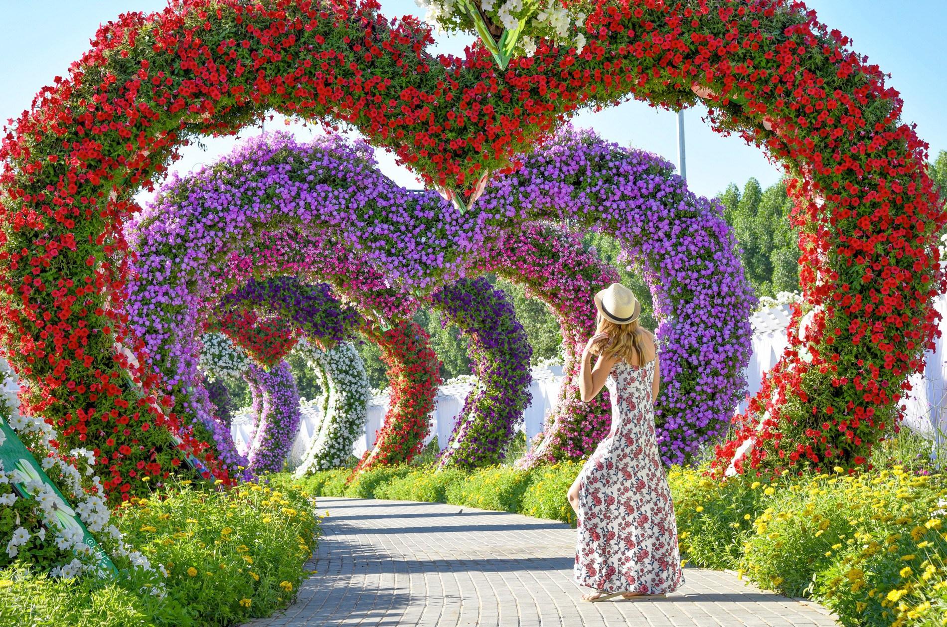 miraclegarden - میراکل گاردن دبی ، امارات | Dubai