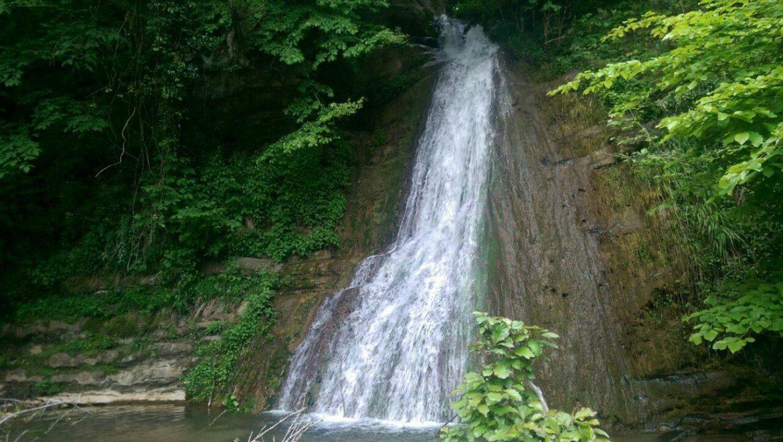 استخرگاه ، در دل جنگل های سر به ف 220742 - روستای استخرگاه ، رودبار   گیلان