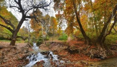 2391303.f2db9c 384x220 - منطقه ییلاقی شاندیز مشهد | Mashhad