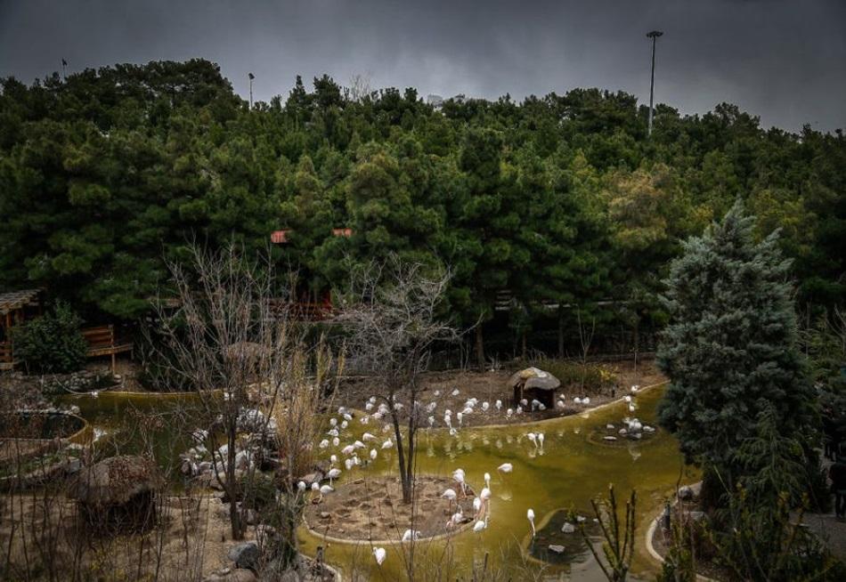 باغ پرندگانتهران