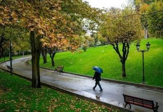 NTqwnJDyPRUGipXE 1520167918680 320x220 - پارک ملت تهران   Tehran