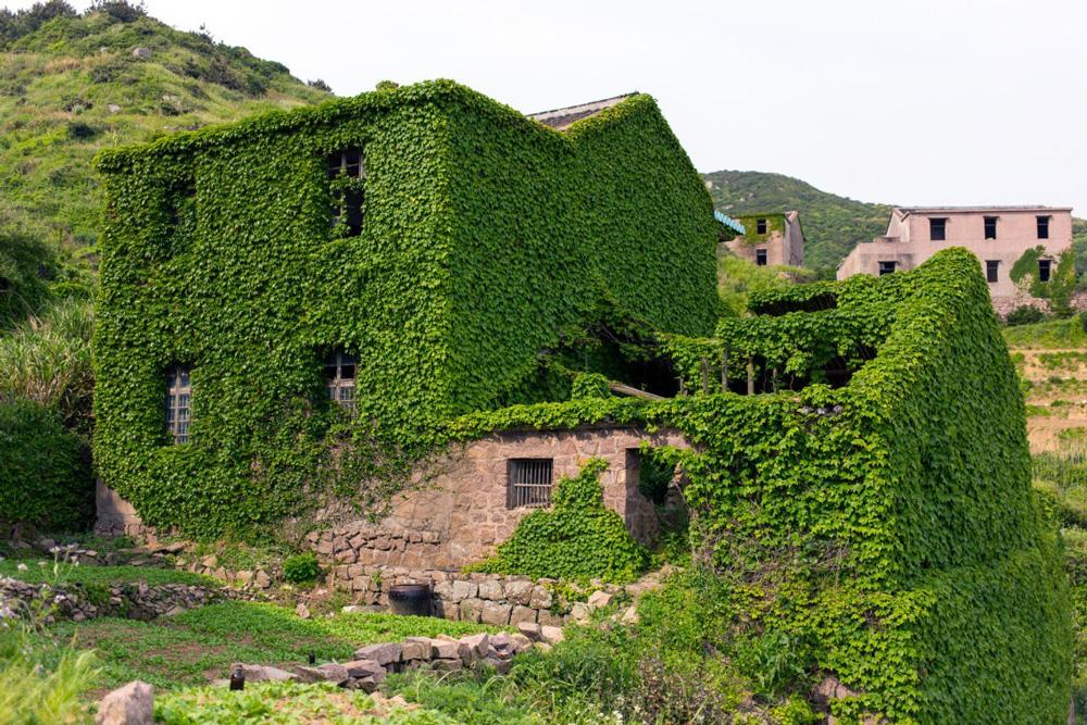 abandon 4 - هوتوان Houtouwan، روستای سرسبز متروکه | چین