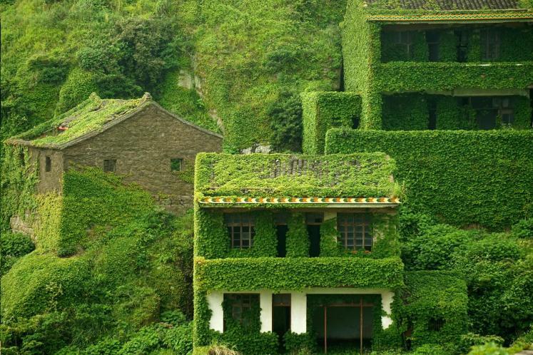 download 1 - هوتوان Houtouwan، روستای سرسبز متروکه | چین
