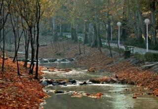 vakilabad mashhad 2 320x220 - پارک وکیل آباد ، تفرجگاه محبوب شهر مشهد | Mashhad