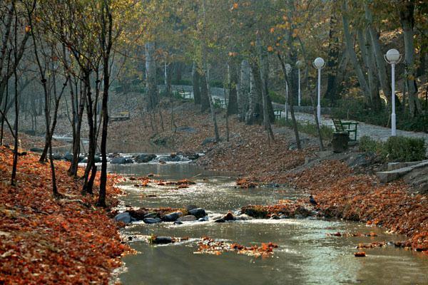 vakilabad mashhad 2 - پارک وکیل آباد ، تفرجگاه محبوب شهر مشهد | Mashhad