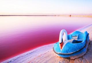 1769784 320x220 - دریاچه صورتی مهارلو شیراز | استان فارس