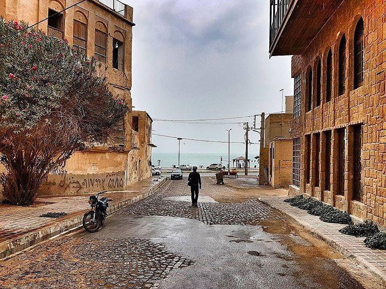 10531480948994671715 1 - جاهای دیدنی بوشهر | Bushehr