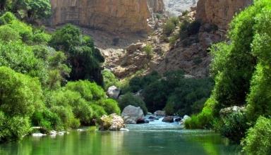 2085 13577 e1564037258116 384x220 - تنگ بستانک شیراز (بهشت گمشده) | Shiraz