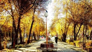 27d57cec 6562 477c a50d b0aa124177a8 384x220 - خیابان چهارباغ اصفهان ، یادگار دوران باشکوه صفویه | Isfahan