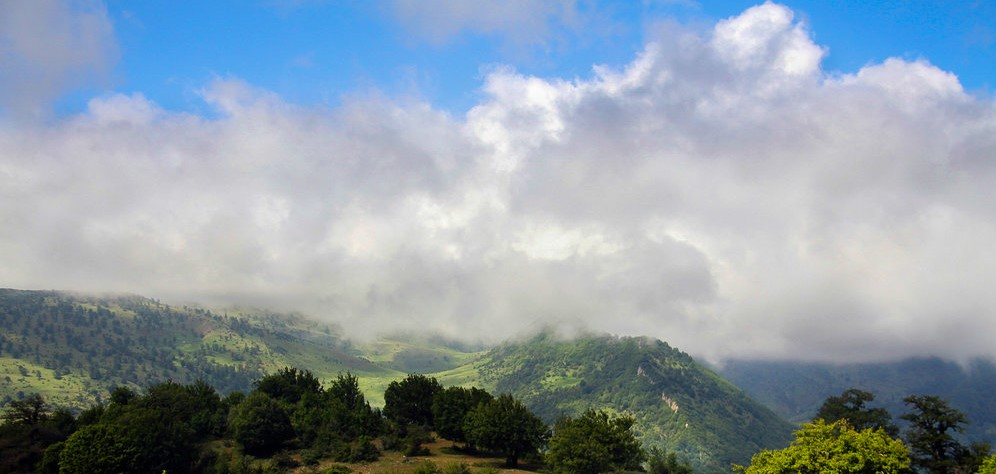 57315539 - جنگل ابر ، جنگلی در میان ابرها | شاهرود