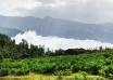 Masal 16 104x74 - جنگل ابر ، جنگلی در میان ابرها | شاهرود