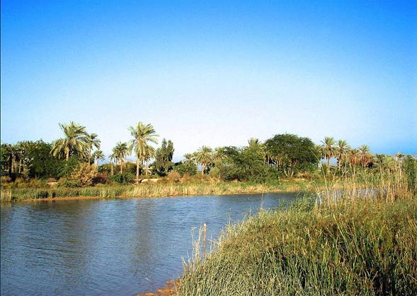 mino2 - بهترین مکان های دیدنی آبادان | خوزستان