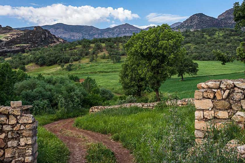 f73c7678 54c0 41f0 8a72 bbd62a60286d - مخمل کوه ، کوهی زیبا در نزدیکی خرم آباد | Lorestan