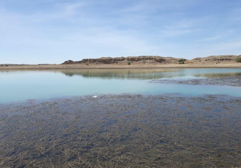 2 - دریاچه و تالاب هامون ، سیستان و بلوچستان | Hamun Lake