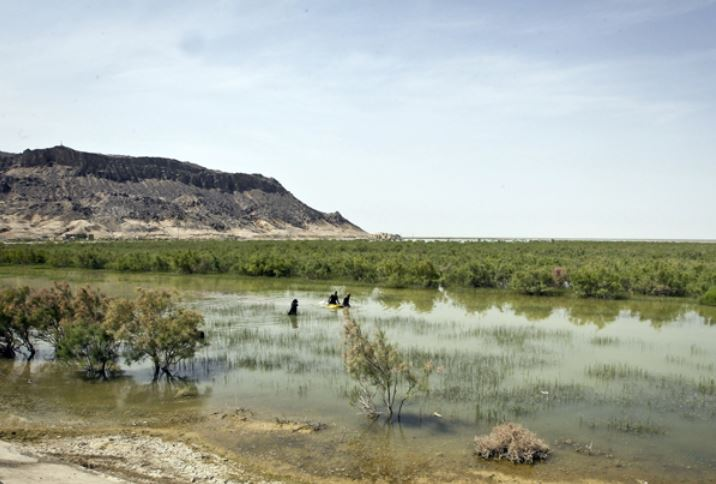 3 - دریاچه و تالاب هامون ، سیستان و بلوچستان | Hamun Lake