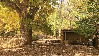 روستای زوارم