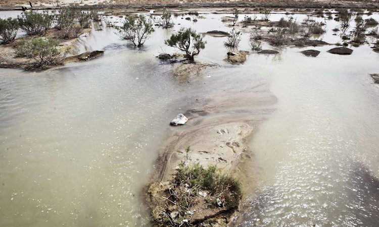 ef061d97 3198 4730 8fa4 0270988b2fc0 - دریاچه و تالاب هامون ، سیستان و بلوچستان | Hamun Lake