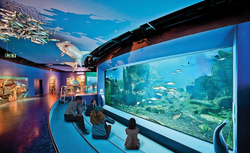 istanbul aquarium1 - آکواریوم استانبول ، ترکیه   Istanbul