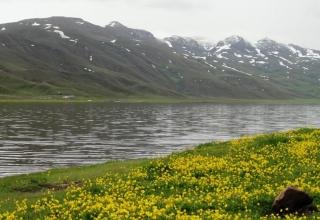 1227243 854 320x220 - دریاچه نئور اردبیل ، دریاچه ای زیبا در مرز استان اردبیل و گیلان | Ardabil