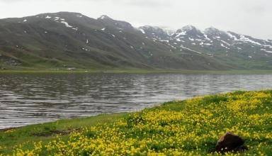 1227243 854 384x220 - دریاچه نئور اردبیل ، دریاچه ای زیبا در مرز استان اردبیل و گیلان | Ardabil