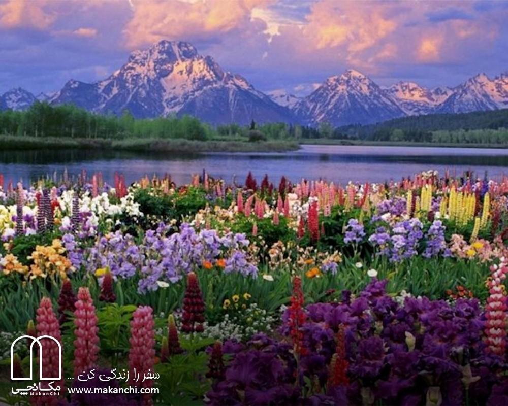سفر به تهران و دماوند