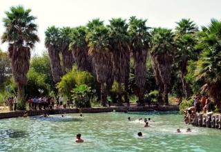 c17 320x220 - باغ چشمه بلقیس ، بهشت شهرستان چرام | Choram