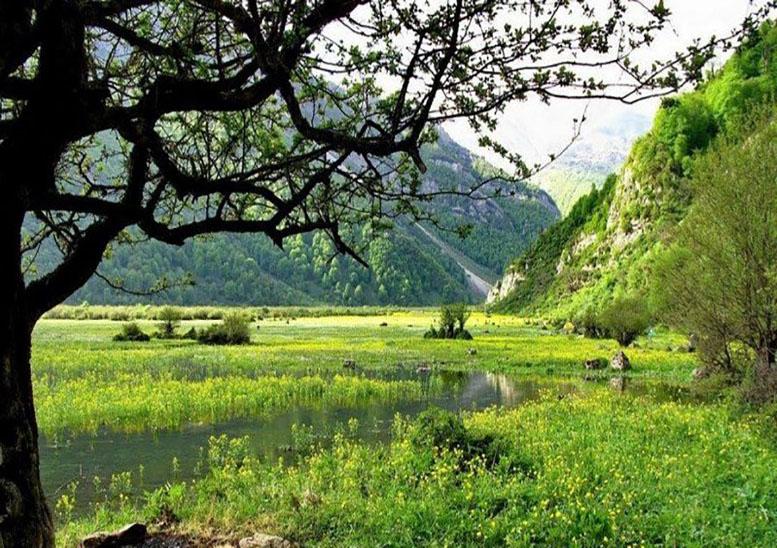 پارک جنگلی چالدره