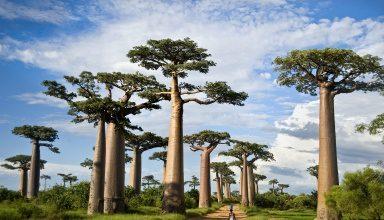 مکان های دیدنی ماداگاسکار