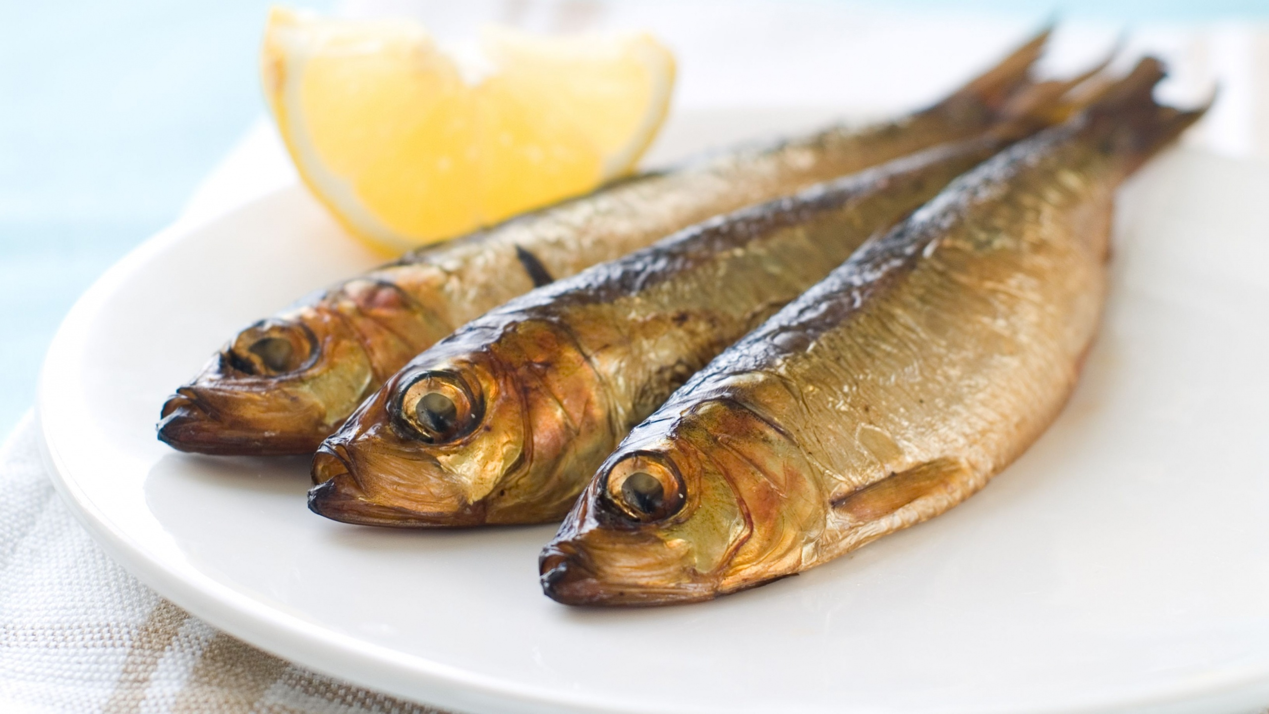 معروفترین غذاهای فنلاند