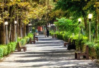 پارک ساعی تهران