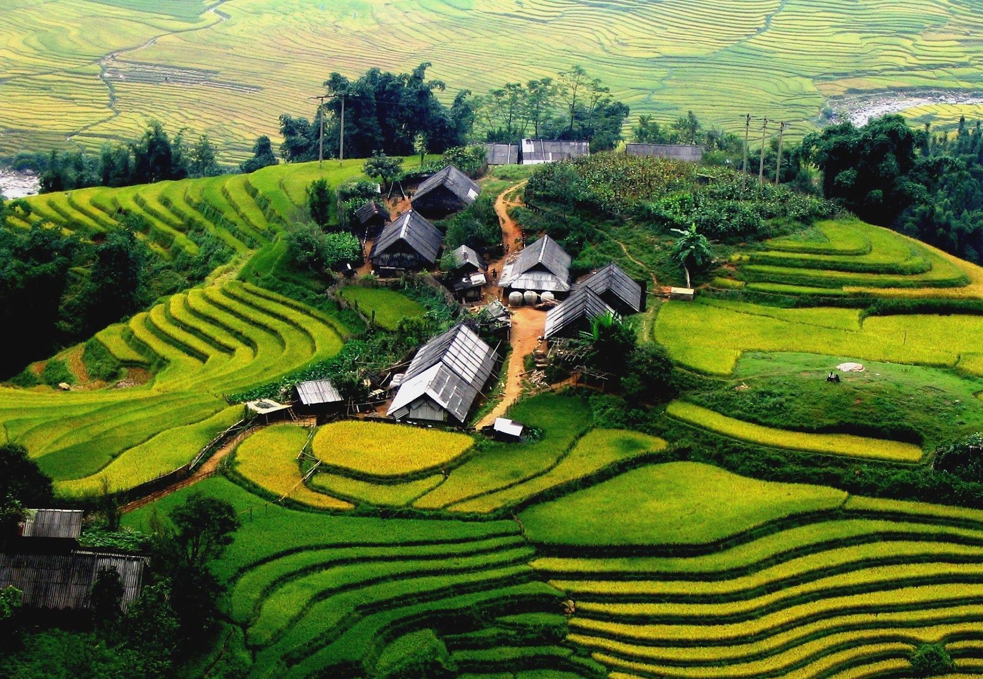 دیدنی های ویتنام