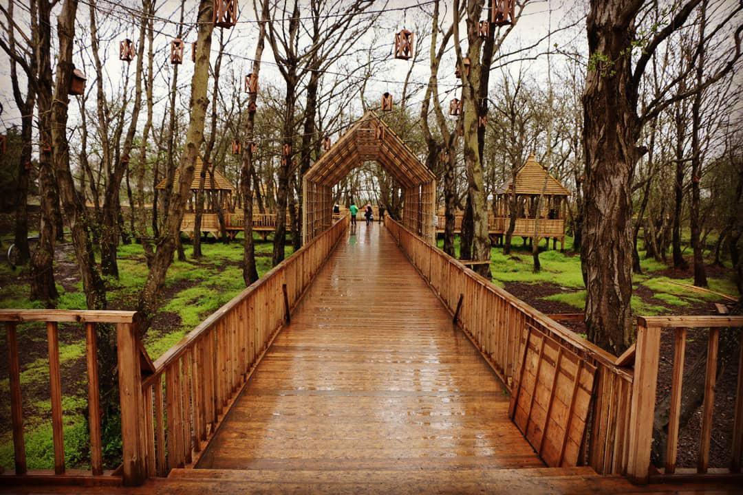 پارک جنگلی توسکا چمخاله