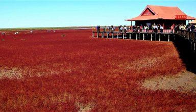 ساحل قرمز پانجین