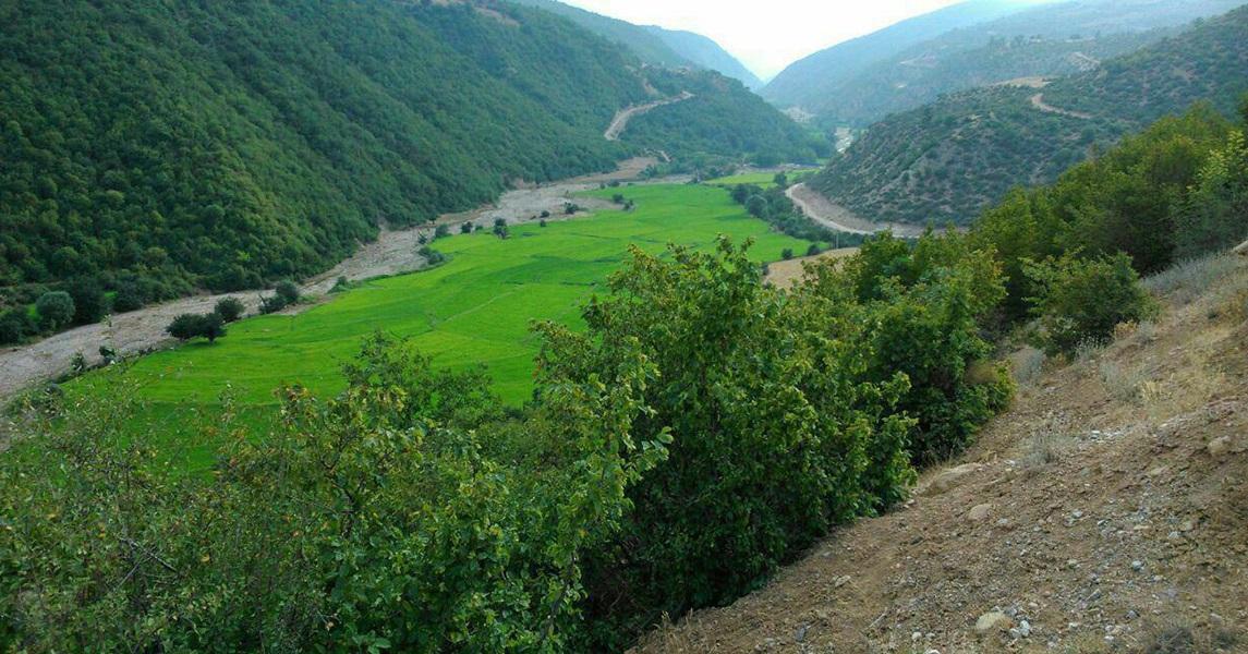 منطقه حفاظت شده هزار جریب